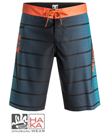 Dc Shoes Harrise Blue Moon haka shop