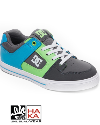 Dc Shoes Pure Elastic Grey Green Blue haka shop